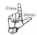 Freelancer SinaLi.