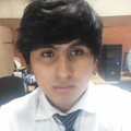 Freelancer Pedro E. L. C.