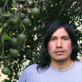 Freelancer Marco A. G. J.