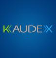 Freelancer Kaudex