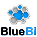 Freelancer BlueBI