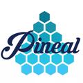 Freelancer Pineal M.