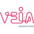 Freelancer Veia C. S.