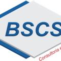 Freelancer Bscs C.