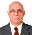 Freelancer Pedro T. T.