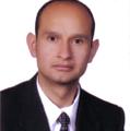Freelancer Luis F. O. G. P. S. d. G.