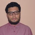 Freelancer José L. T. J.