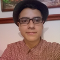 Freelancer Juan D. S. P.