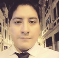 Freelancer Javier R. E.
