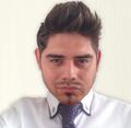 Freelancer Hancel R.