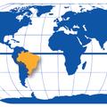 Freelancer Mundial T.