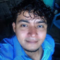 Freelancer Ricardo A. I. A.