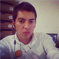 Freelancer Abies A. L. M.