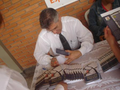 Freelancer Caetano C.