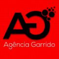 Freelancer Agência G.