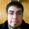 Freelancer Andres T.