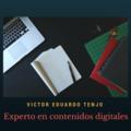 Freelancer Victor E. T.
