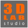Freelancer 3D L. S.