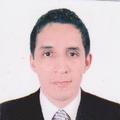 Freelancer Giancarlo T. A.