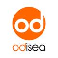 Freelancer Odisea