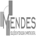 Freelancer Mendes T.