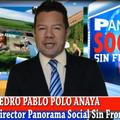 Freelancer PEDRO P. P. A.