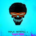 Freelancer Ricardo A. V. D.