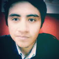 Freelancer Luis G. Y.
