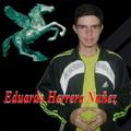 Freelancer Eduardo A. H. N.