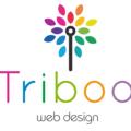 Freelancer Triboo W. D.