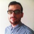 Freelancer Luis A. R. V.