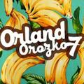 Freelancer Orland J. O.