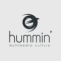 Freelancer hummin