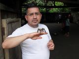 Freelancer Alfonso P.