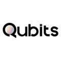Freelancer Qubits T.
