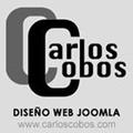 Freelancer Carlos C. M.