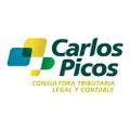Freelancer Carlos P. C.
