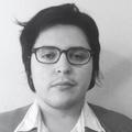 Freelancer Adrian H. D.