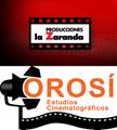 Freelancer Estudios O. C.