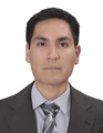 Freelancer Ricardo M. G. H.