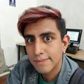 Freelancer Luis R. S. G.