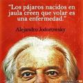 Freelancer Alirio J. B. C.