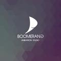 Freelancer Boomerang A. S.