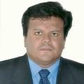 Freelancer Pedro M. L. R. M.