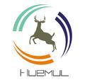 Freelancer Huemul B. S.