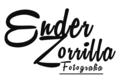 Freelancer Ender Z.