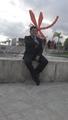 Freelancer Rogelio M.