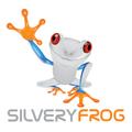 Freelancer Silvery F.