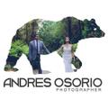 Freelancer Andres O. L.