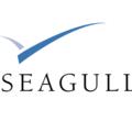 Freelancer Seagul.